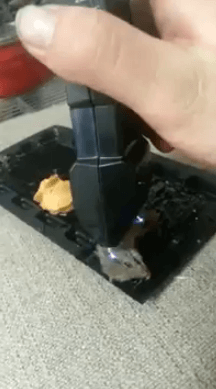 Mouse torture