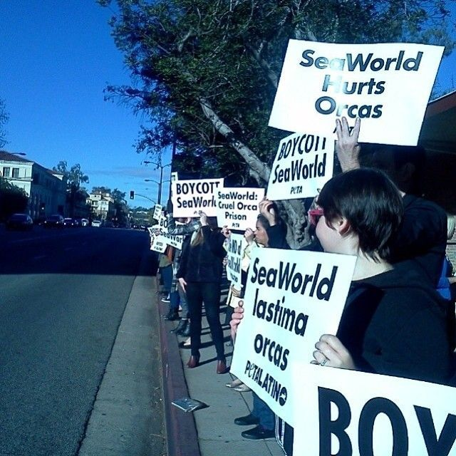 Pasadena Supporters
