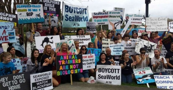 SeaWorld Orlando Demo 2-22-14