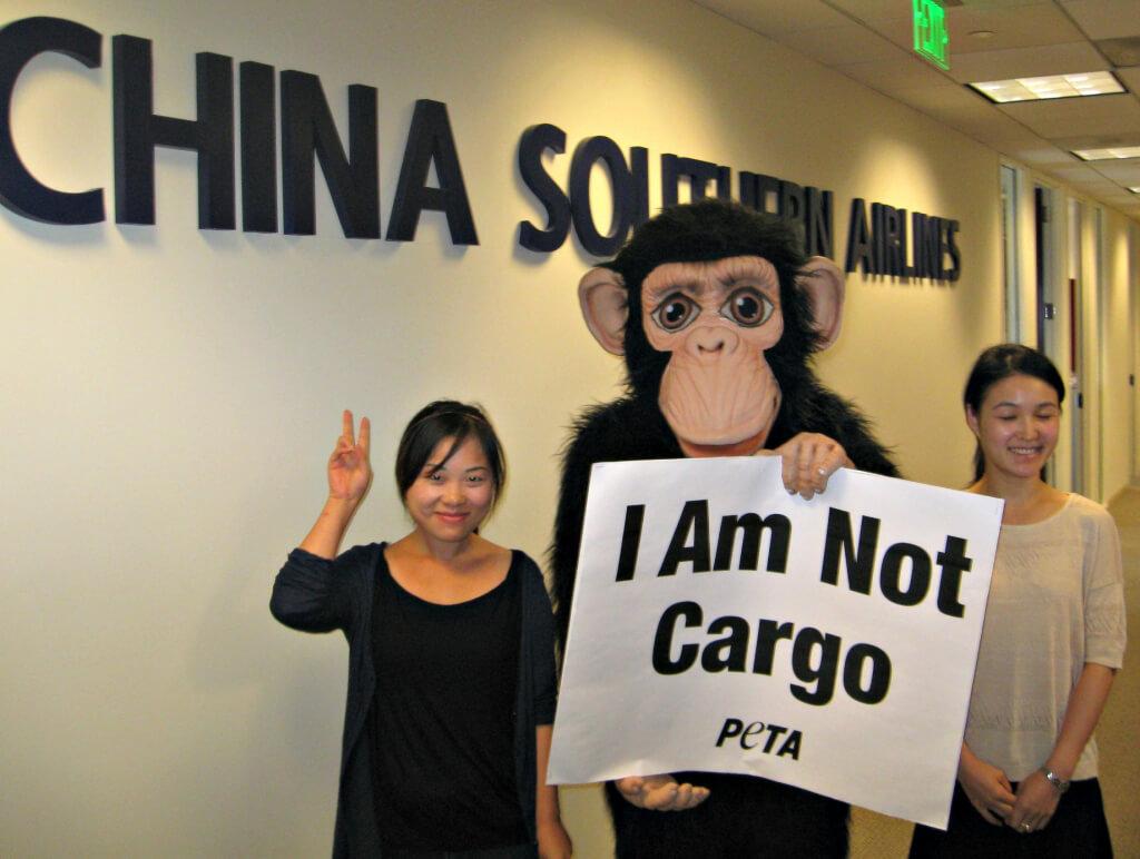 China Southern Demo at LAX