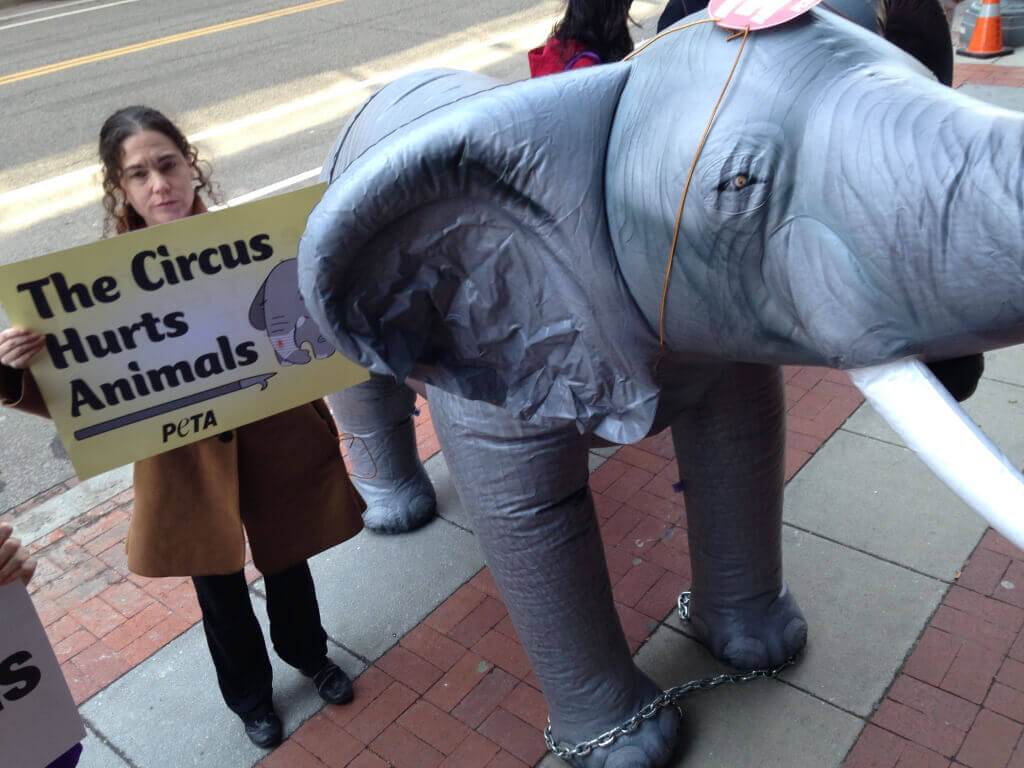 DC Ringling Bros. Demonstration with Inflatable Elephant