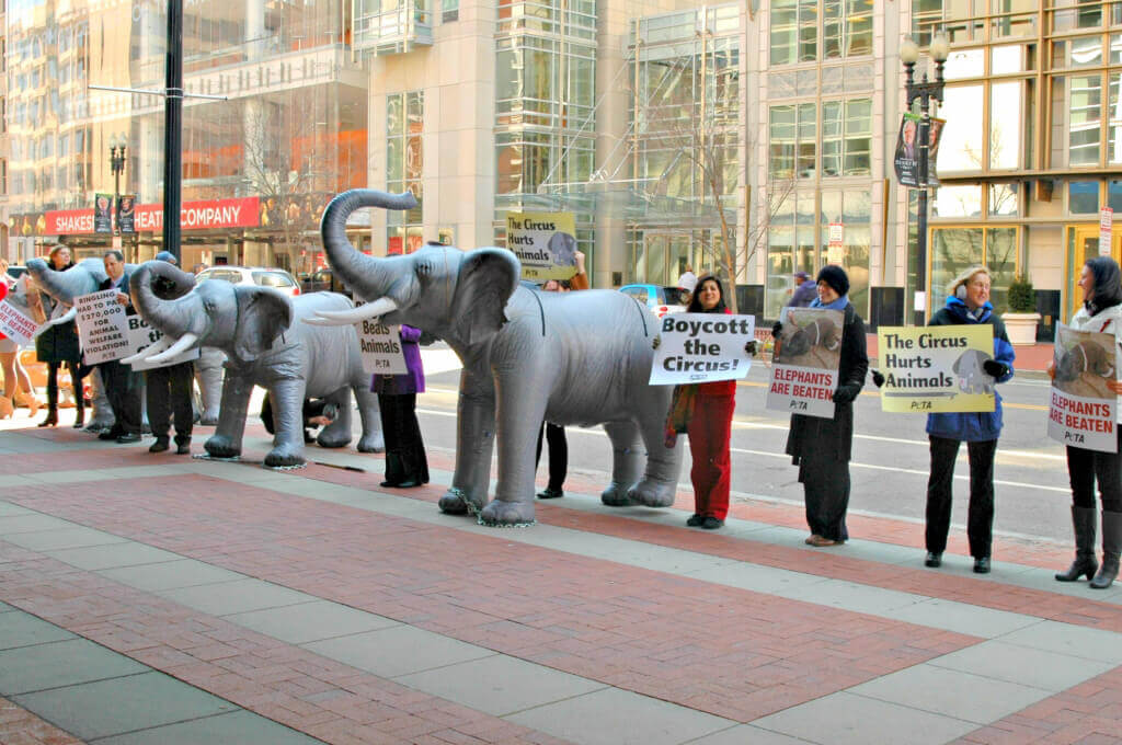 DC Ringling Bros. Demonstration with Ingrid Newkirk