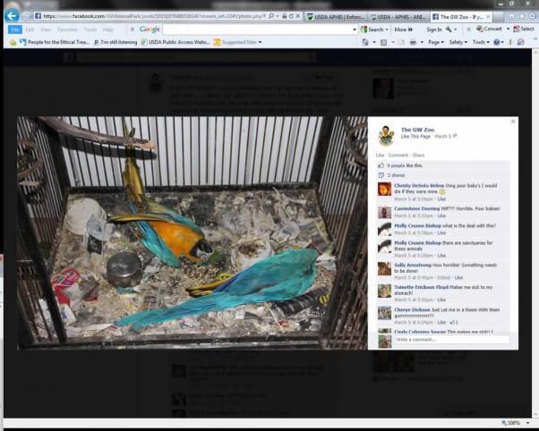 Dead Birds at GW Roadside Zoo