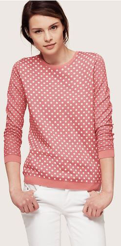 Dotted Zip BACK