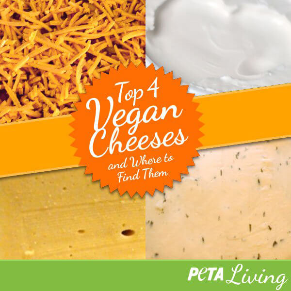 Top 4 Vegan Cheeses and Where To Find Them