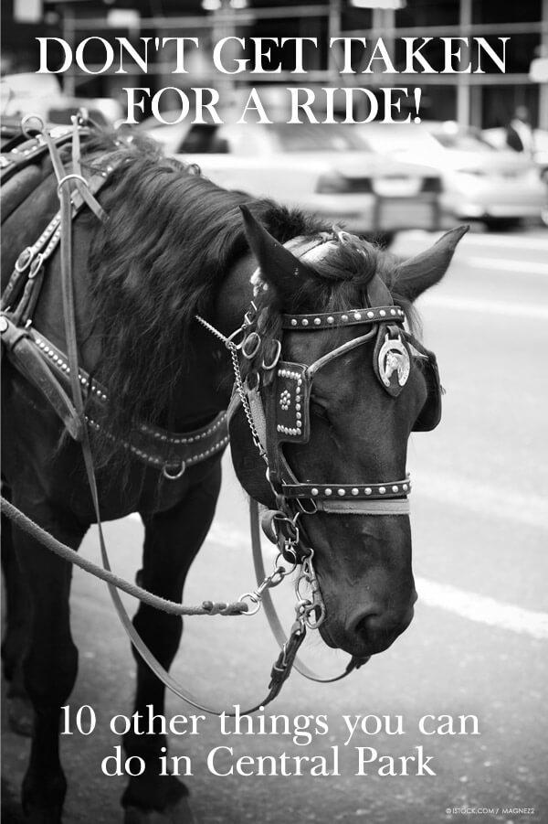 peta-living-central-park-horse-carriage-alternatives-v05
