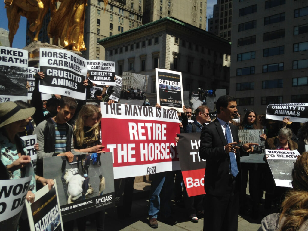 Horse-Drawn Carriage Demonstration in New York City