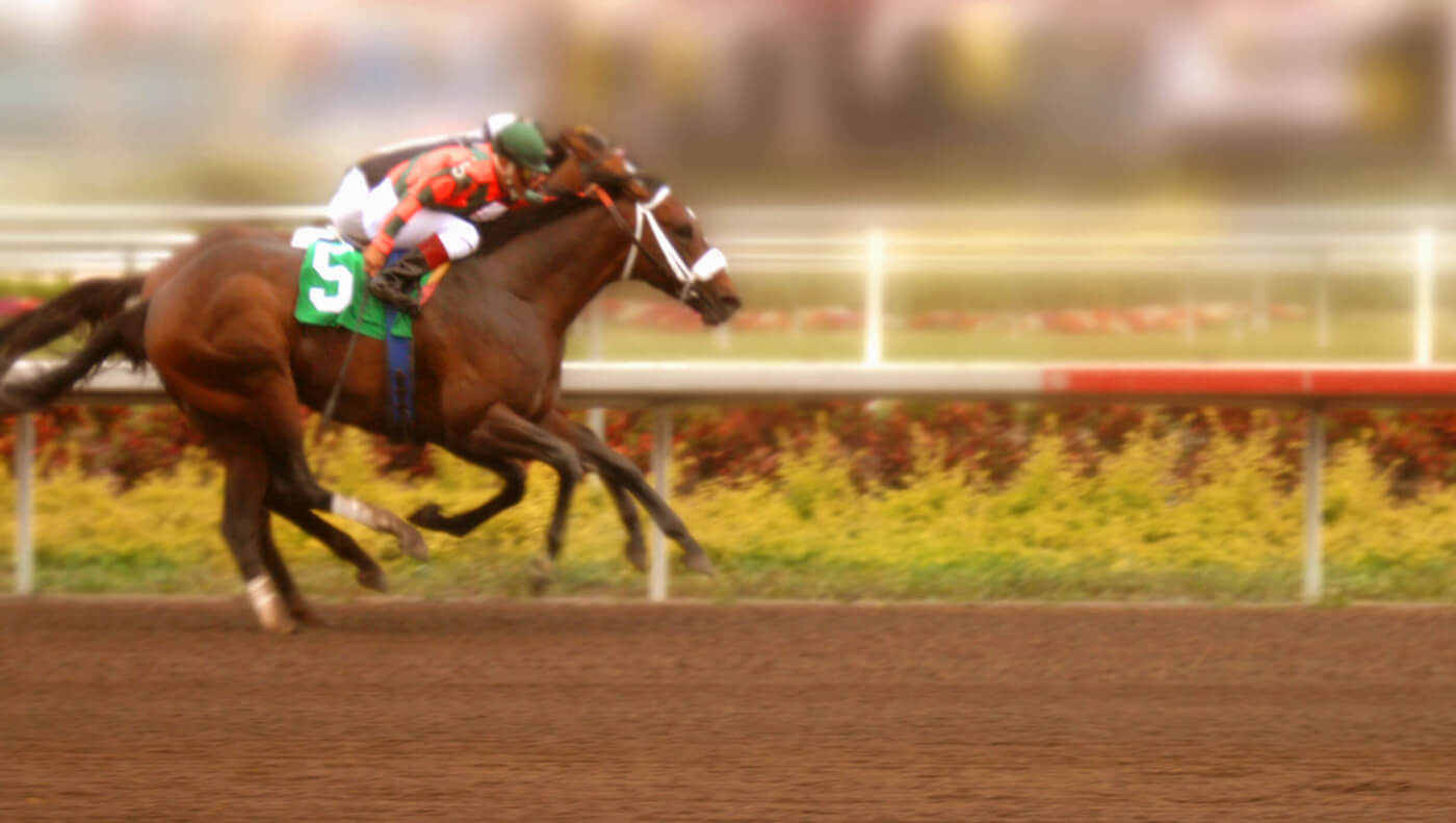 Kentucky HorseRacing Track Returns to Its Old Dirty Tricks PETA