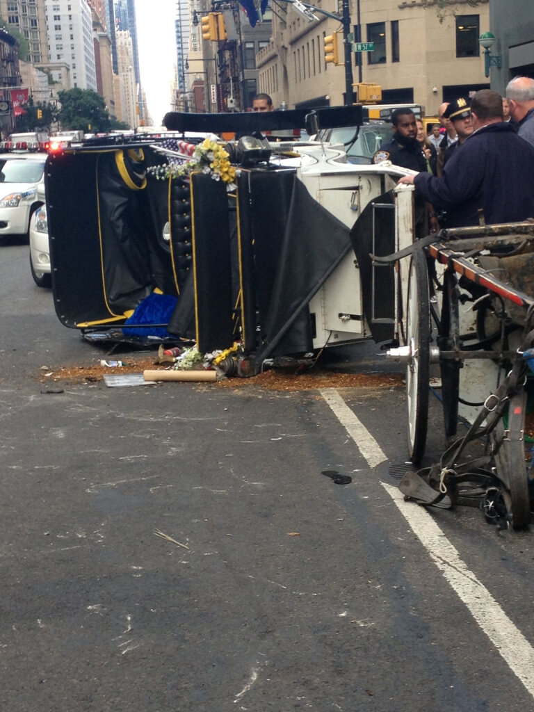 Horse-Drawn Carriage Overturned
