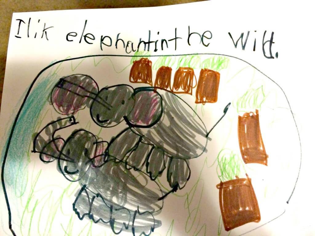 Karina draws elephants