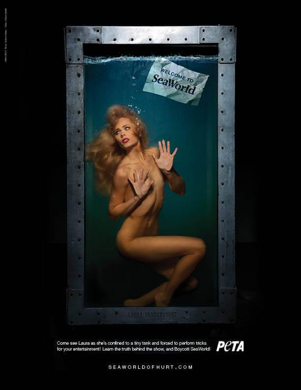 Laura Vandervoort: Boycott SeaWorld