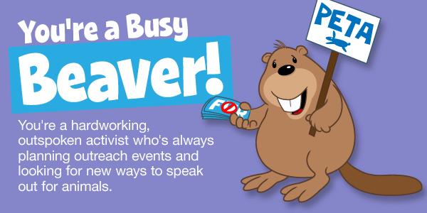 peta-animal-rights-quiz-cartoons-beaver-v1