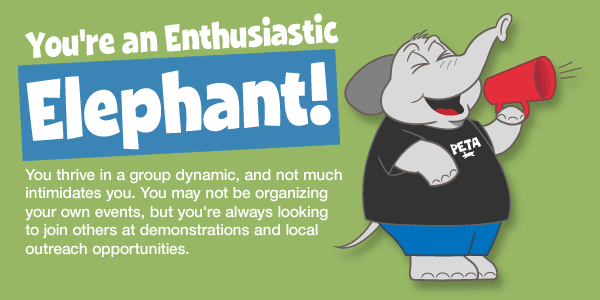 peta-animal-rights-quiz-cartoons-elephant-v1