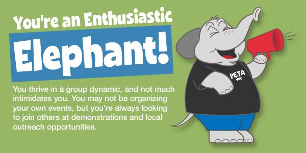 peta-animal-rights-quiz-cartoons-elephant-v1