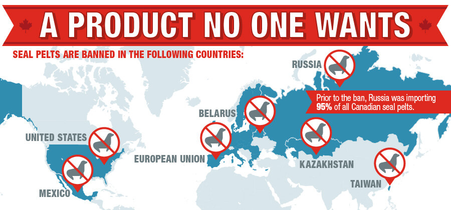 Countries Where Seal Pelts Are Banned