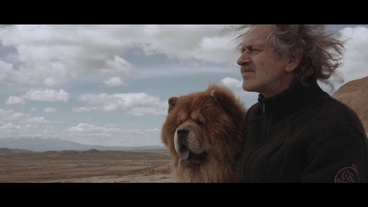World Premiere: Chrissie Hynde's Music Video Inspired by Dogs' Love | PETA