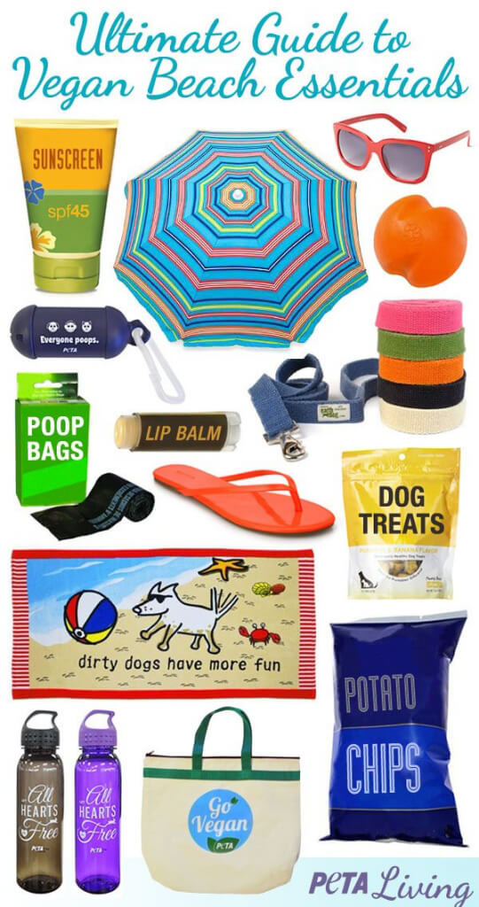 Vegan Beach Essentials Share Able Image