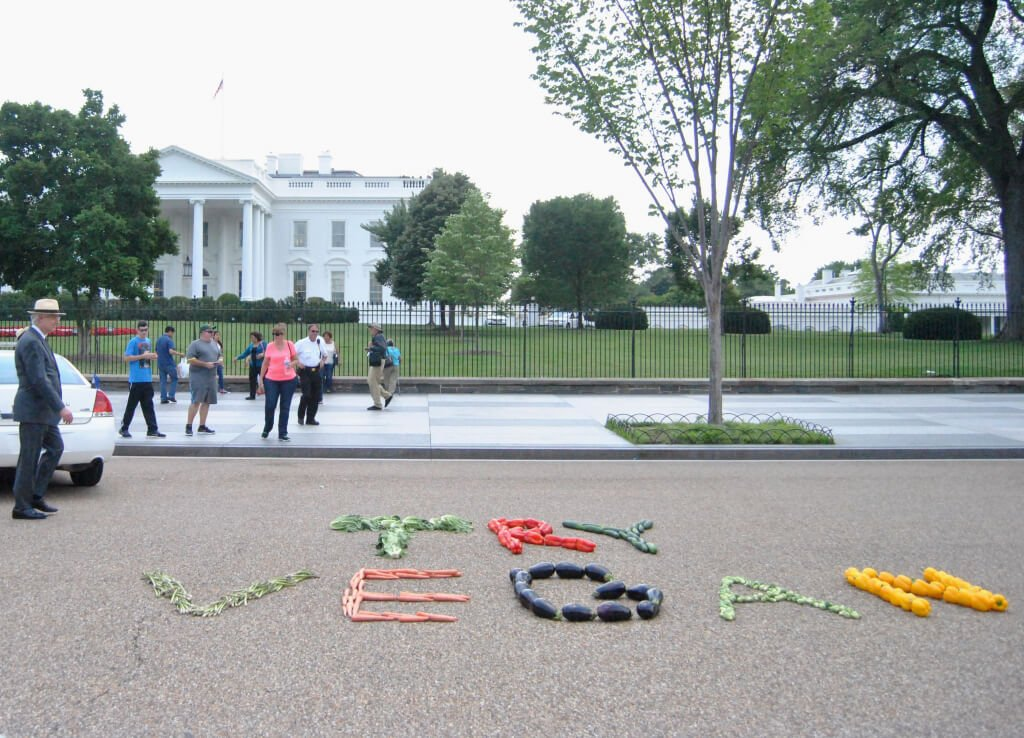 TRY VEGAN Display in Front of White House