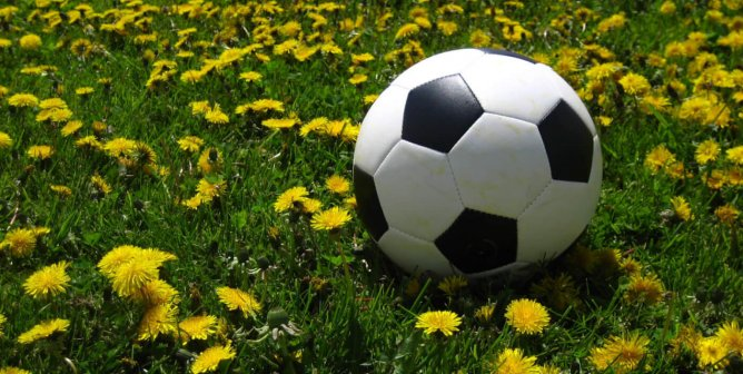 Going Vegan: Was That the Key to World Cup Victory?