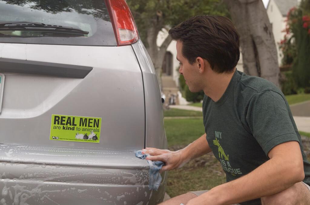 Bumper Sticker on Car