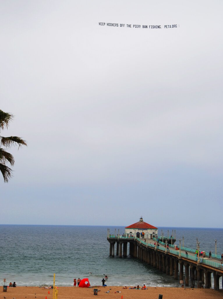 Keep Hookers Off the Pier - Ban Fishing Banner