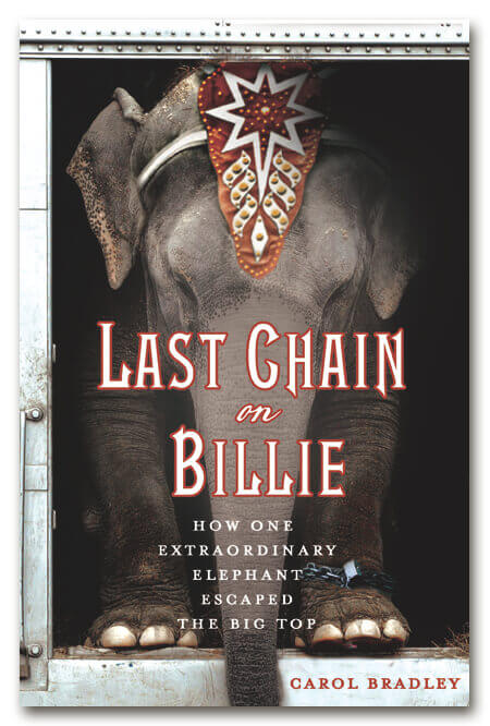 Last Chain on Billie Book Cover