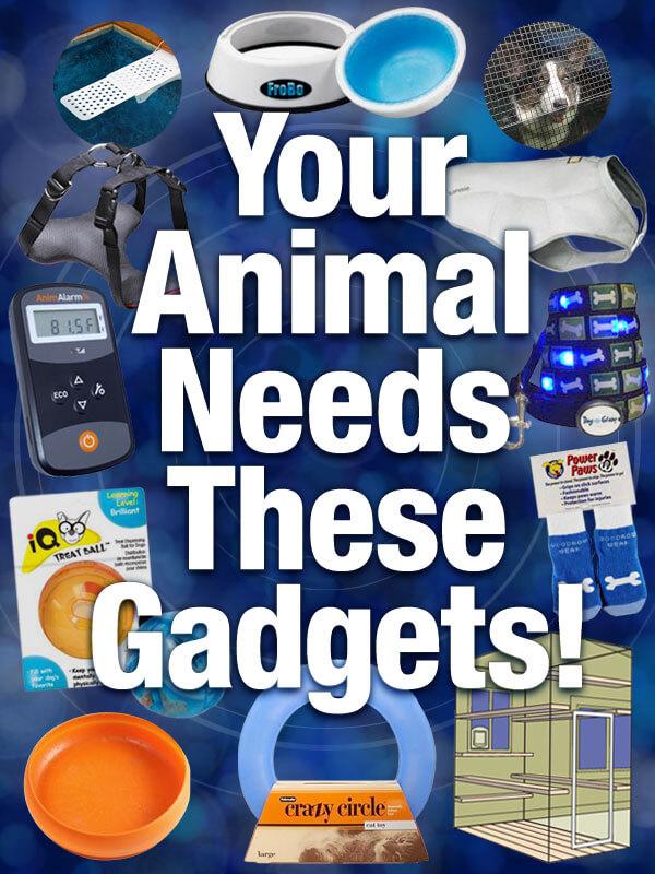 peta-living-12-gadgets-v2