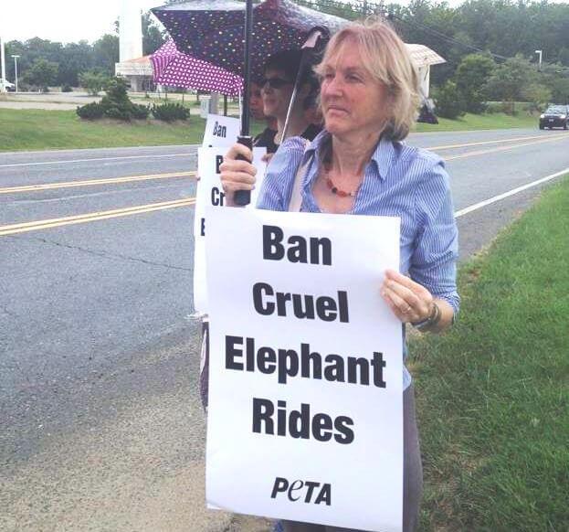 Elephant Ride Protest at Renaissance Fair