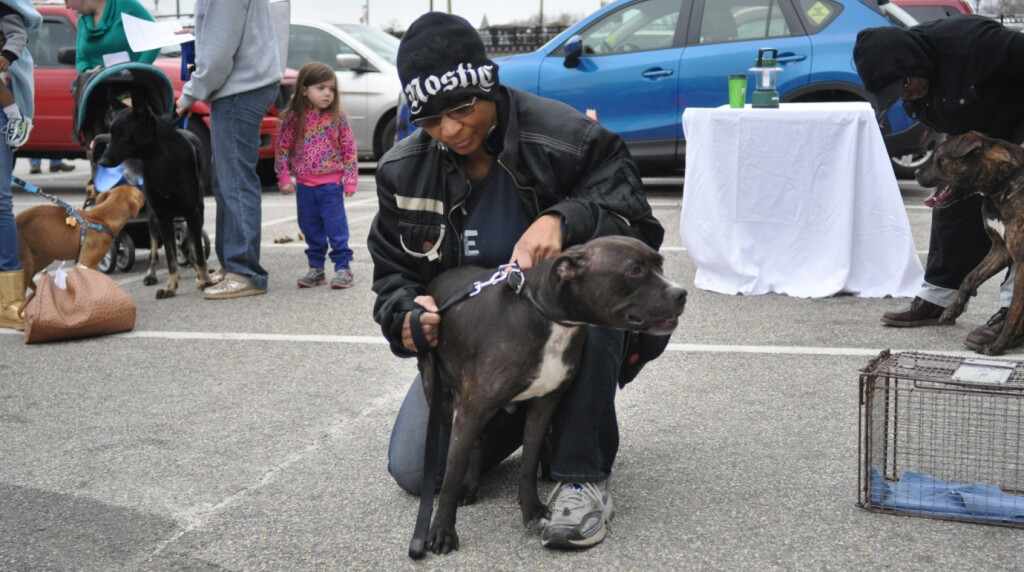 Person With Dog at Mobile Clinic