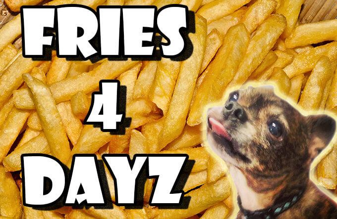 FRIES 4 DAYZ