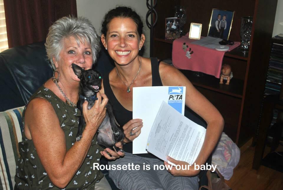 Roussette's New Family