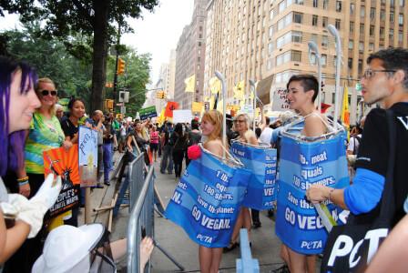 PETA People's March Demo