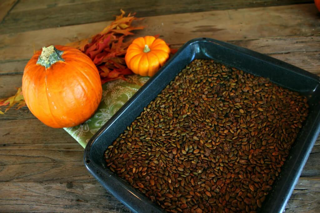 Roasted Cinnamon Seeds Optimized