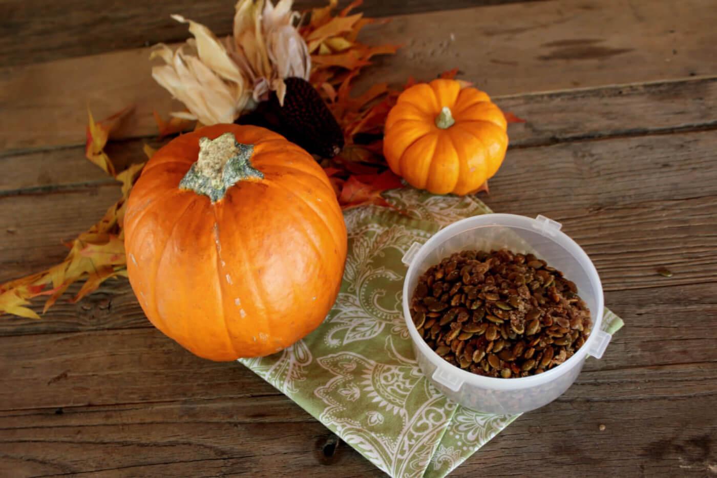 Roasted Cinnamon-Sugar Pumpkin Seeds