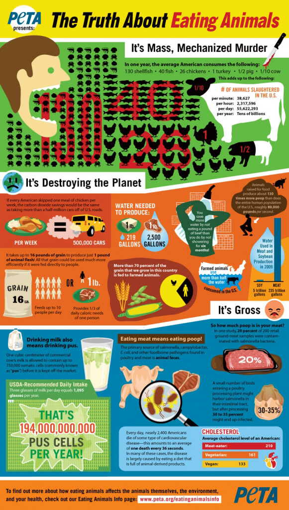 PETA Infographic: The Truth About Eating Animals