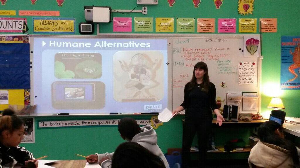 TeachKind Presentation