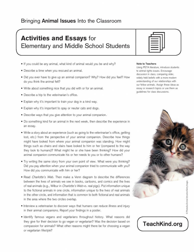 activities for elementary and middle school students  teachkind worksheet
