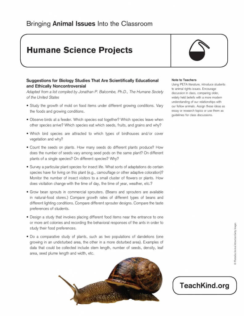 humane science projects peta science project ideas worksheet