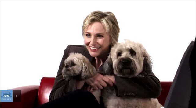 Jane Lynch with Two Dogs