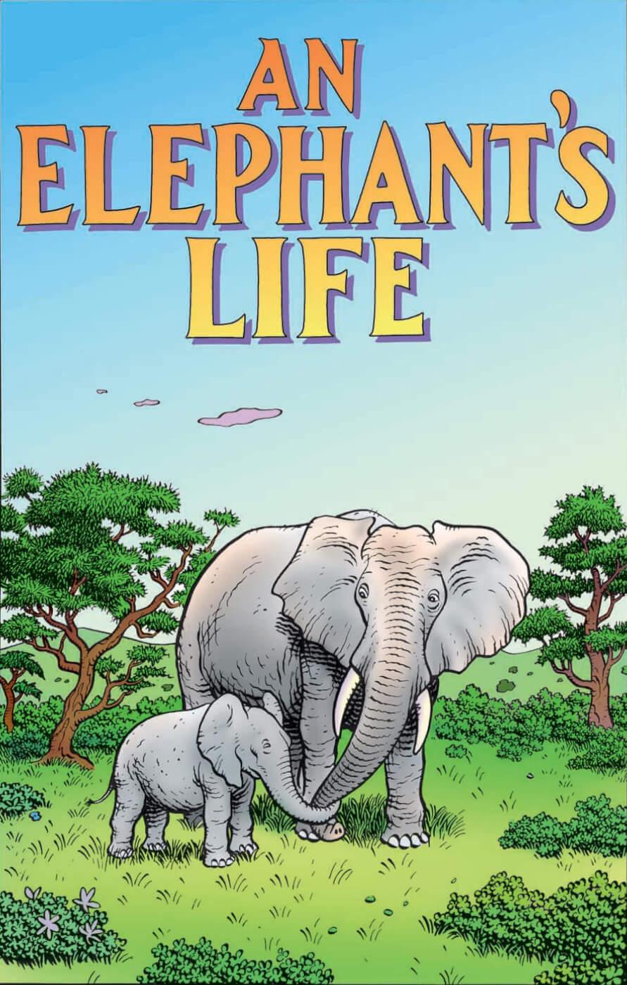 an elephant u0027s life peta