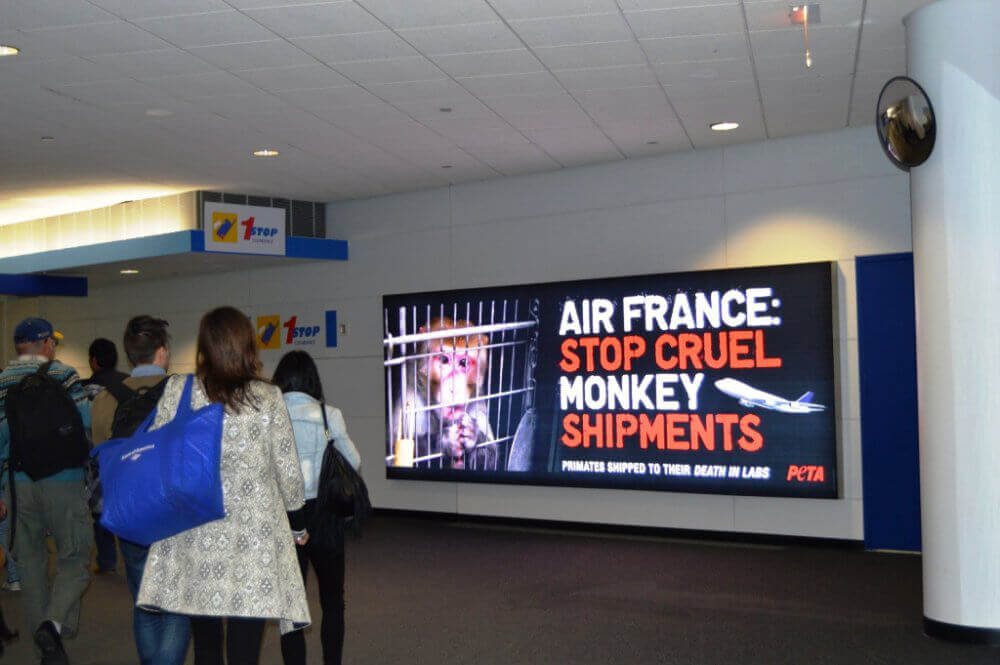 Air France O Hare ad in place USE THIS__1417652713_24.171.149.195