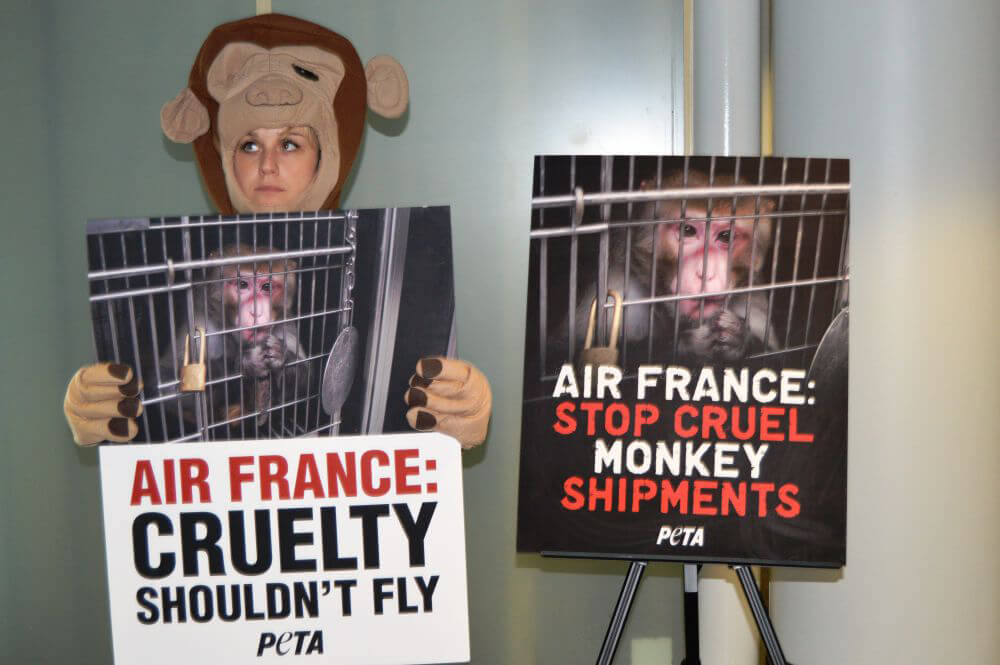 Air France Protest at O'Hare Airport