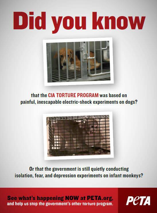 PETA Ad: The Government's Other Secret Torture Program