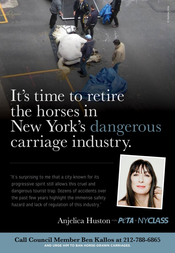 Angelica Huston PETA Ad to Ban Horse-Drawn Carriages