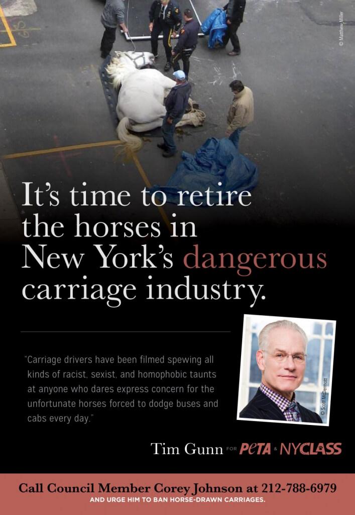 Tim Gunn PETA Ad to Ban Horse-Drawn Carriages