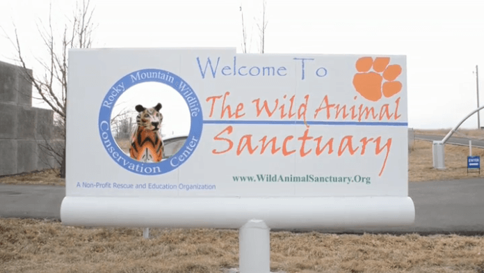 Welcome to the Wild Animal Sanctuary