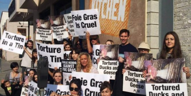 VICTORY: California's Foie Gras Ban Will Soon Be Back in Effect