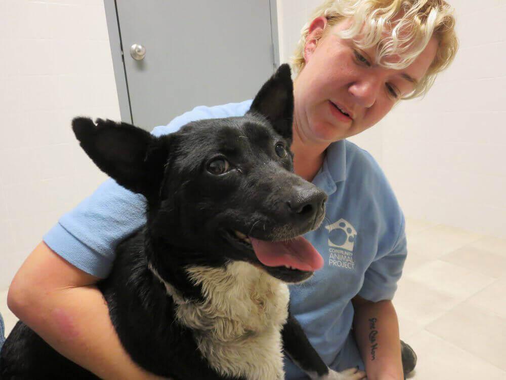 Kora With PETA Staffer