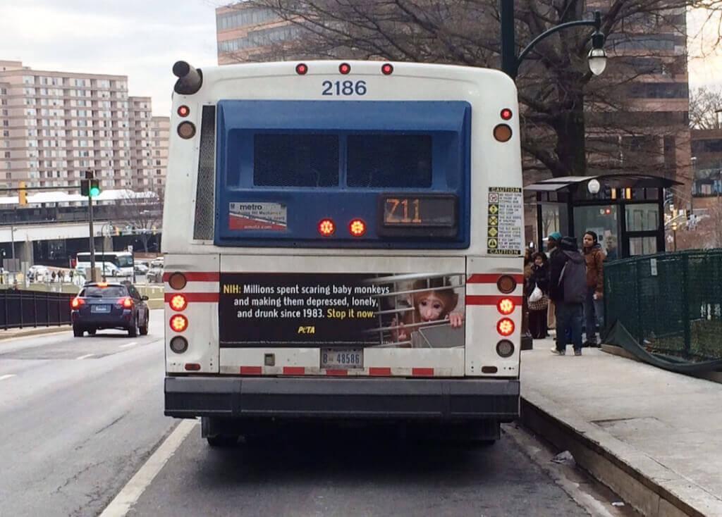 PETA NIH Ad on Side of Bus