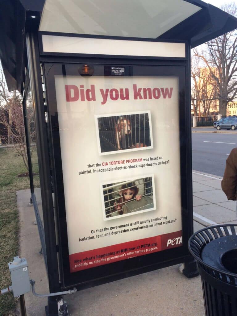 PETA NIH Ad at Bus Stop